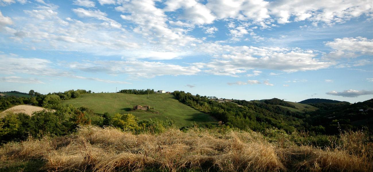 colline contignaco